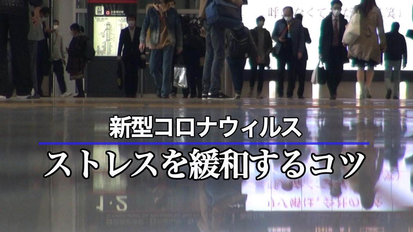 教育ビデオ(セミナー・講演)関西大学 池見陽教授